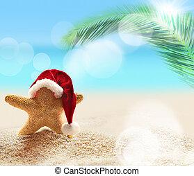 lato, plaża., rozgwiazda, claus, święty, hat.