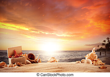 lato, plaża, strafish, powłoki
