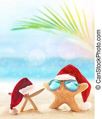 lato, pojęcie, rozgwiazda, plaża., santa kapelusz, boże narodzenie