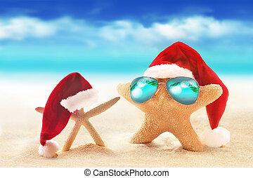 lato, sunglasses, rozgwiazda, święty, hat., plaża