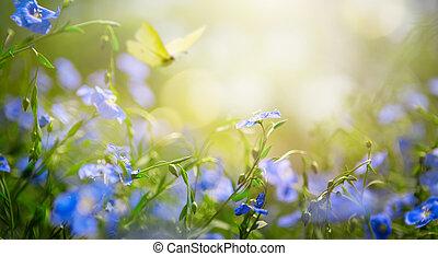 lato, sztuka, tło, świeży, abstrakcyjny, skoczcie kwiecie, albo