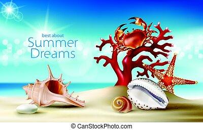 lato, turkus, krab, plaża, koral, tło, rozgwiazda, kamyki, wektor, seashells, piaszczysty