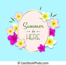 lato, ułożyć, kwiaty, ilustracja