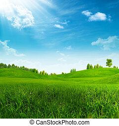 lato, zielone górki, piękno, dzień