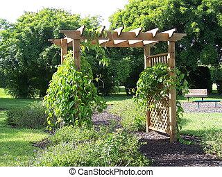 Garden Pergola with vines growing through lattice.