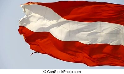 Latvia flag flutters in wind.