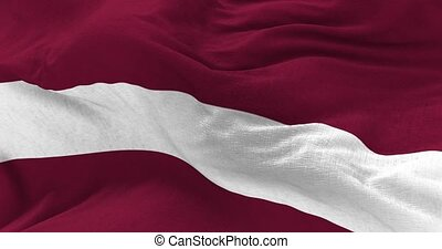Latvia Flag in the Wind - Close up Latvia flag blowing in...
