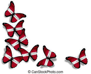 Latvian flag butterflies, isolated on white background