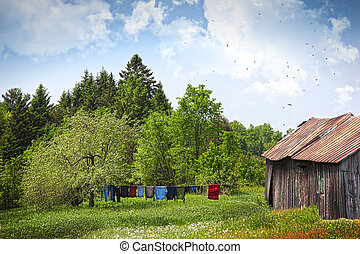 Laundry drying on clothesline on a summer day