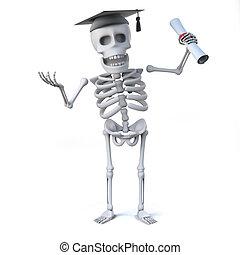 laureato, 3d, ha, scheletro, diploma