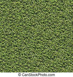 Evergreen Laurel Bush Surface. Seamless Tileable Texture.
