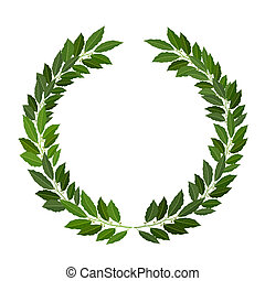 laurel wreath on white background