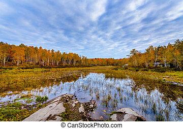 Laurentian Lake Conservation Area - View of Laurentian Lake...