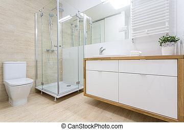 lavabo, interior, en, tradicional, diseño
