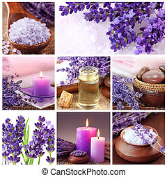 lavanda, balneario, collage