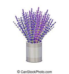 lavande, illustration., bouquet, vecteur, pot.