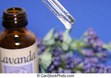 lavande, parfum