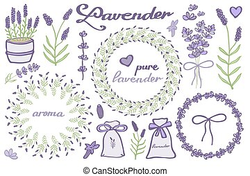 lavandula, garabato, lavanda, caligrafía, set., hand-drawn...