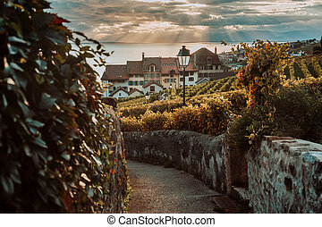 Lavaux, Switzerland: Lake Geneva and traditional swiss hauses during sunset seen from Lavaux vineyard hiking trail in Canton Vaud
