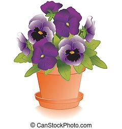 lavendel, purpurrote pansies, blumentopf