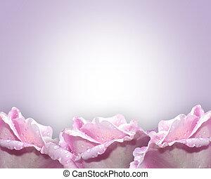 lavendel, rozen