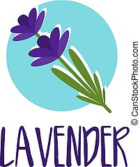 lavender., abstrakt, illustration, vektor, design, mall, logo, ikon