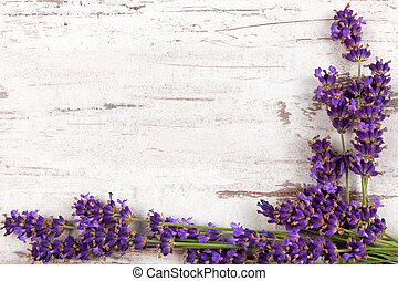 Lavender background. Lavender on white wooden antique...