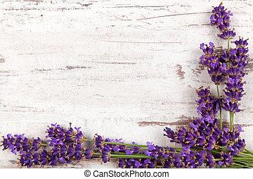 Lavender background. Lavender on white wooden antique...