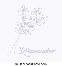 Lavender bouquet. Hand drawn flowers. Doodle drawing