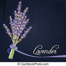 Lavender bouquet - Illustration of bouquet of lavender