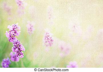 Lavender textile image over canvas fabric.