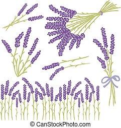 Lavender design elements