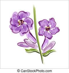 lavender., fleur, closeup