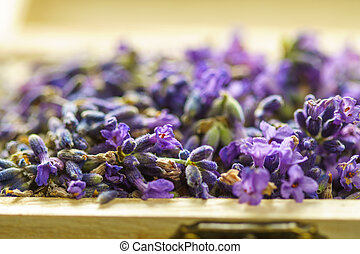 Lavender flower in a wooden box