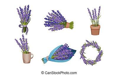 Lavender Flowers in Vase and Flowerpot Vector Set
