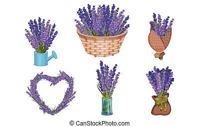 Lavender Flowers in Vase and Wicker Basket Vector Set