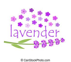 Lavender flowers - Lavender label concept. Vector...