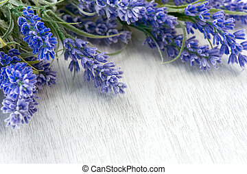 Lavender flowers over white