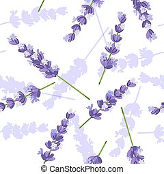 Lavender flowers vector seamless pattern