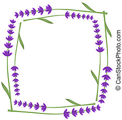 Lavender frame. Vector illustration