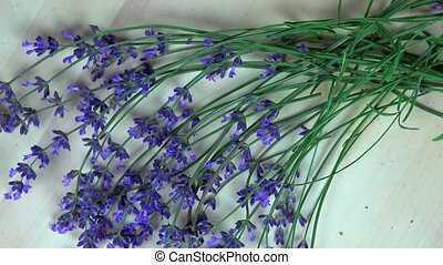 Lavender herb bunches. clockwise turntable - Lavender herb...