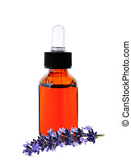Lavender herb flower leaf sprigs with an aromatherapy essential oil dropper bottle, isolated on white background