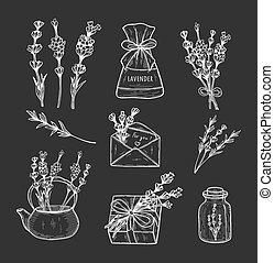 lavender herb set on black background