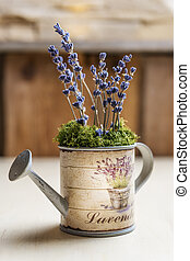 Lavender - Image of lavender in a small watering can