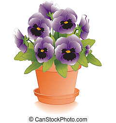 Lavender Pansies, Clay Flowerpot - Lavender Pansy flowers...