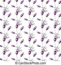 Lavender pattern with flowers