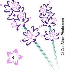 Set of lavender flower and stem design elements
