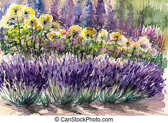 Lavender - Beautiful garden with blooming lavender, roses...