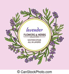 lavender vector frame - lavender flowers vector frame on...