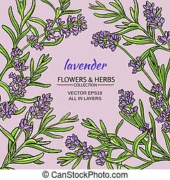 lavender vector frame